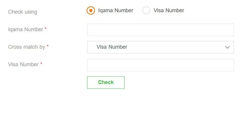 Check or Print Exit/Re-Entry or Final Exit Visa Status Online